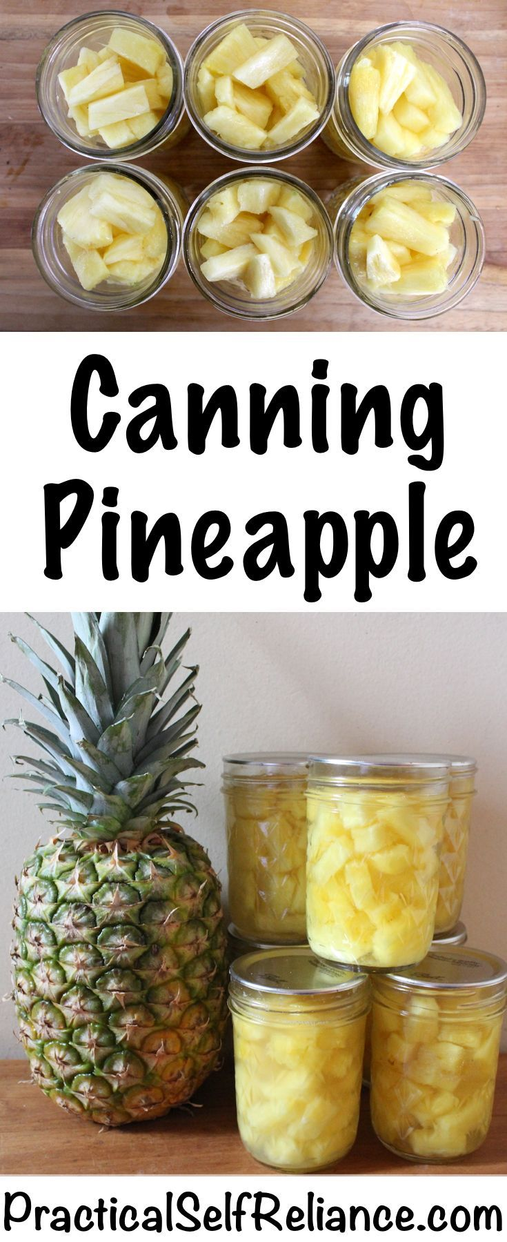 Canning Pineapple How to Can Pineapple ~ A quick guide to canning pineapple for long term preservation. Homemade canned pineapple tastes much better than store bought, and it's a great way to preserve sale pineapples for later use.