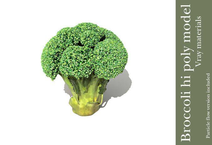 Broccoli plant | 3D model | 3D models CGt | Pinterest | Broccoli, Model and Vegetables