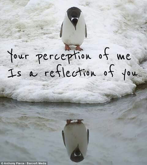 Your Perception Of Me Is A Reflection Of You Family Perception