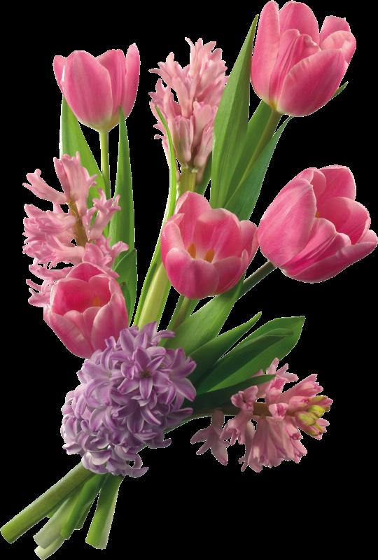 Taller creativas arte digital cristiano ramos encantadores de bellas flores postales - Ramos de flores hermosas ...