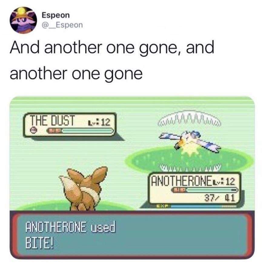 Pin by M.H. on PokéMemes   Pokemon funny, Pokemon memes ...
