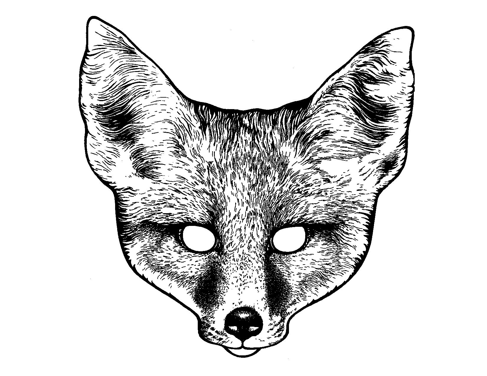 Fox image description here weddings pinterest foxes