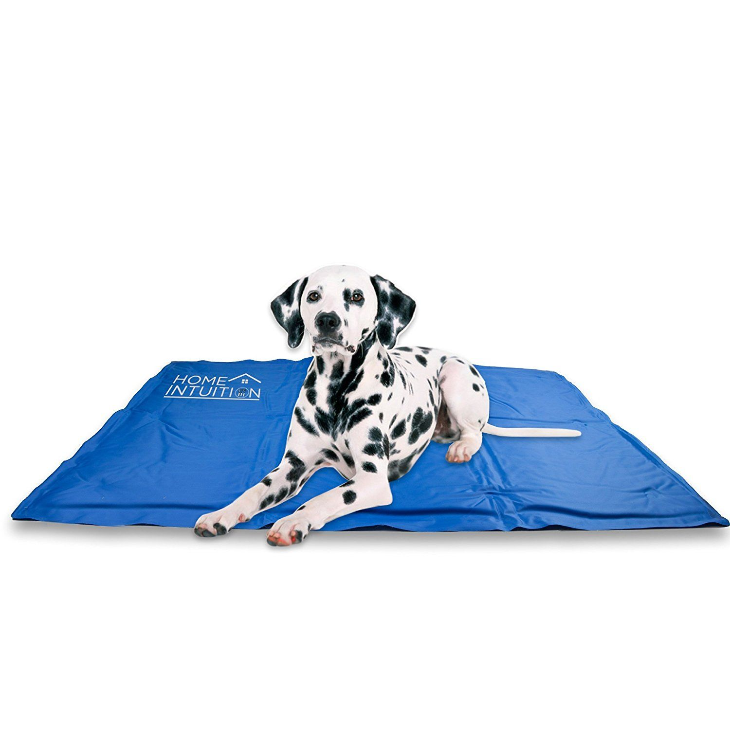 Home Intuition Chill Comfort Cooling Gel Pet Mat For More Information Visit Image Link This Is An Affiliate Link And I Receive A Cat Feeding Dog Diapers Cat Fleas