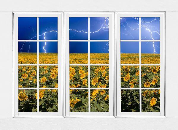 A stunning image- sunflowers and lightning as seen through a window ...