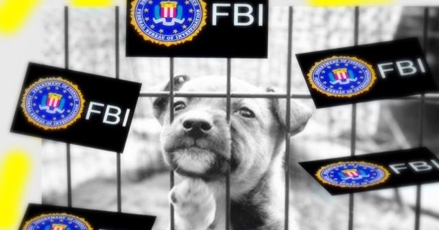 Save Wonderful Nature and Animals + ART: The FBI now tracks animal abuse like it tracks homicides