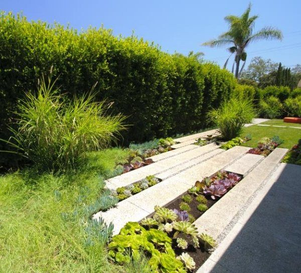 Ideen Für Das Gartendesign Sukkulenten Pflanzen Pflege Garten ... Ideen Fur Das Gartendesign