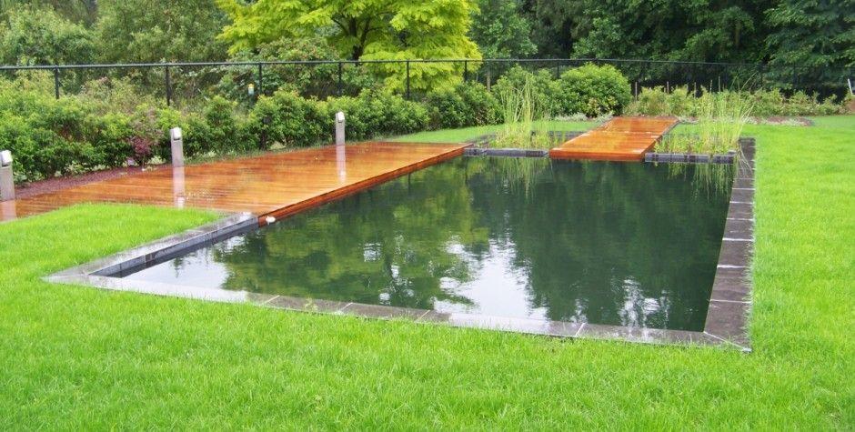 Moderne zwemvijver met apart filtergedeelte constructie bestaande uit gemetselde kuip op - Bekleed beton ...