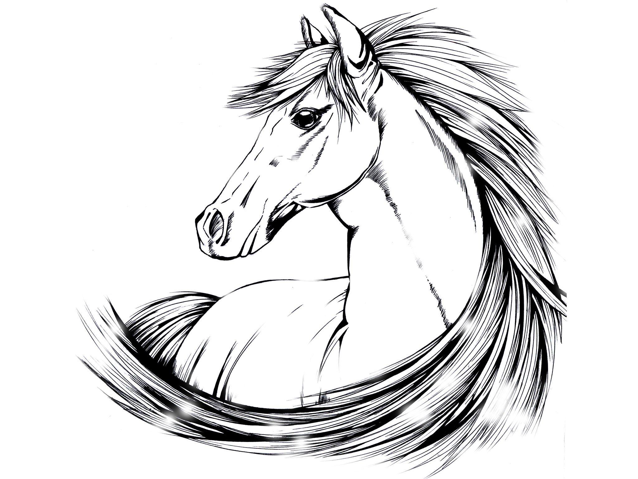 Indian Horse Tattoo Designs