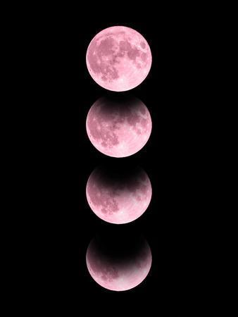 'Pink Moon' Print - Emanuela Carratoni | AllPosters.com