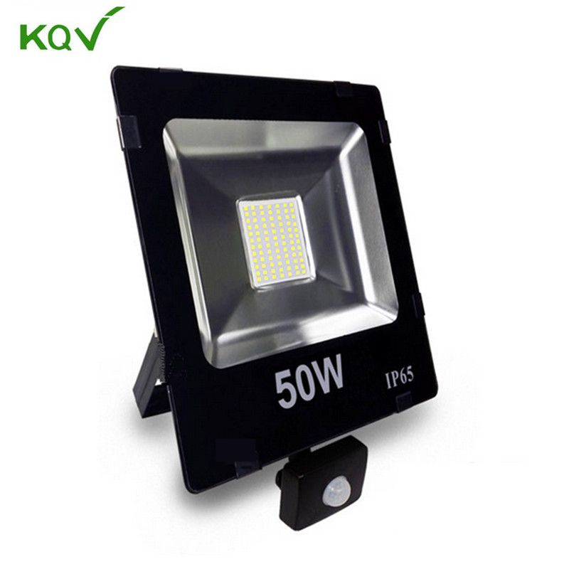 Pir Motion Sensor Led Projecteur 10 W 30 W 50 W 230 V 110 V Induction Projecteur Lumiere D Inondation En Plein Air Chemin Lumiere I Outdoor Lighting Outdoor Led