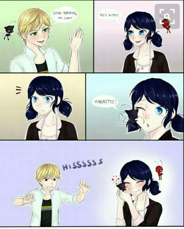 Plagg would absolutely adore Marinette | Miraculous in 2019