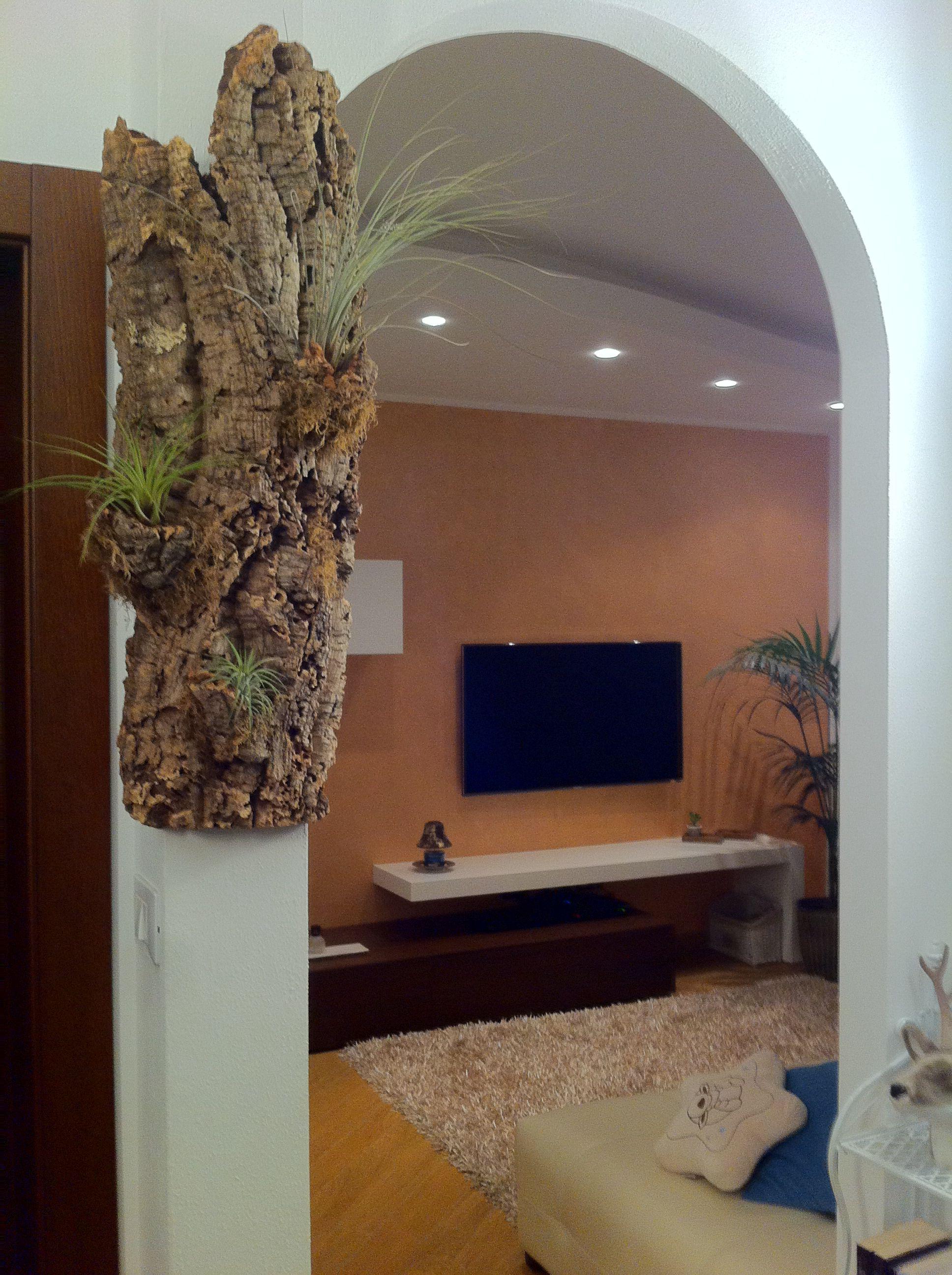 Home decor - Air plant - DIY