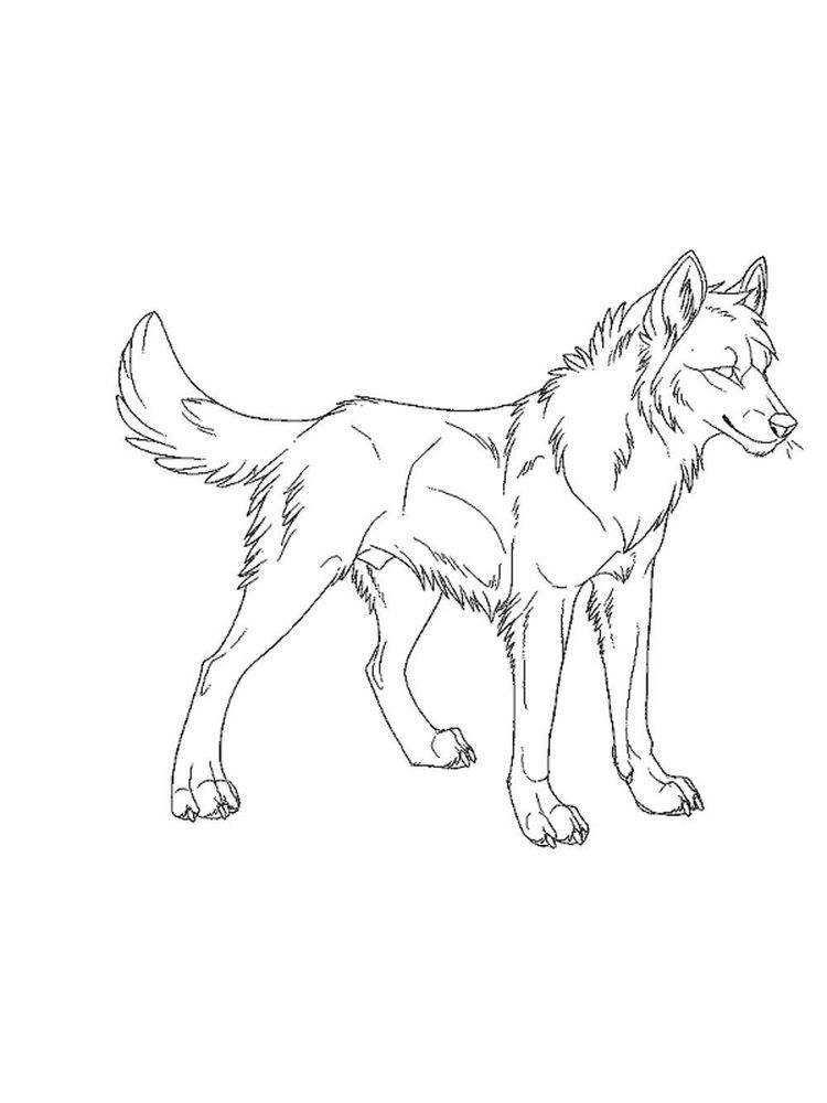 Three Little Wolves Coloring Pages Wolves Are One Of The Wild Animals Or Hunting Animals That Live In Animal Coloring Pages Wolf Colors Unicorn Coloring Pages