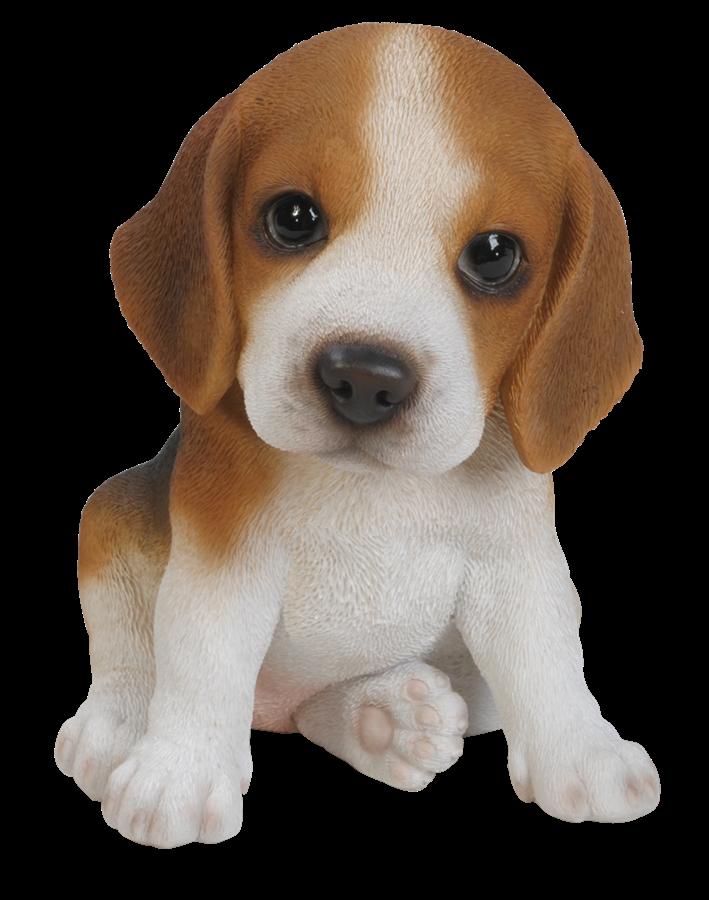 Pet Pals Beagle Puppy   Resin Garden Ornament   £9.99 | Garden4Less UK Shop