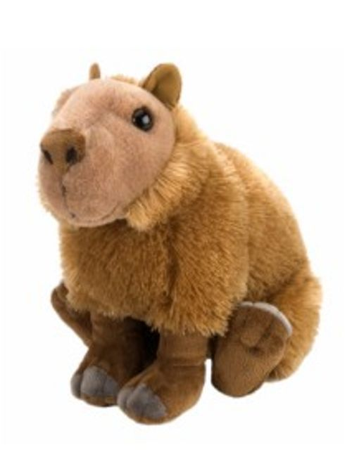 "12"" CK Capybara Plush Stuffed Animal Toy New Toys"
