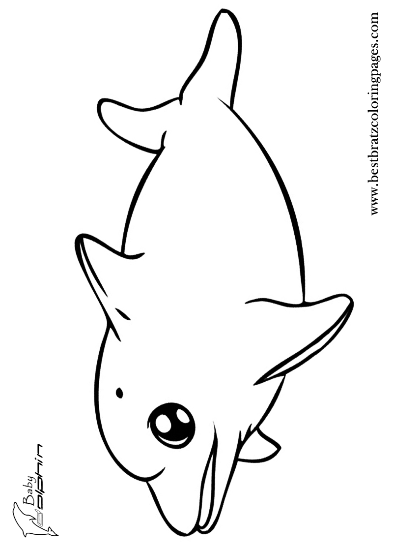 baby dolphin coloring pages - Cute Dolphin Coloring Pages