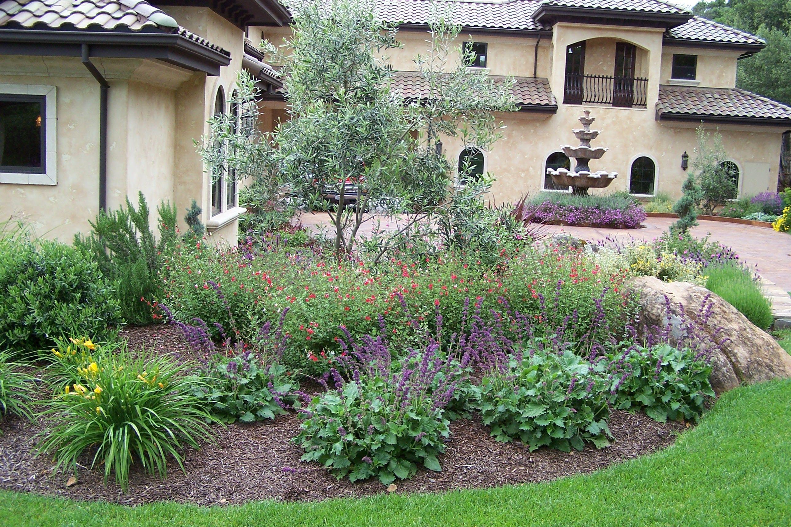 Low Water Use Deer Resistant Mediterranean Garden For 400 x 300