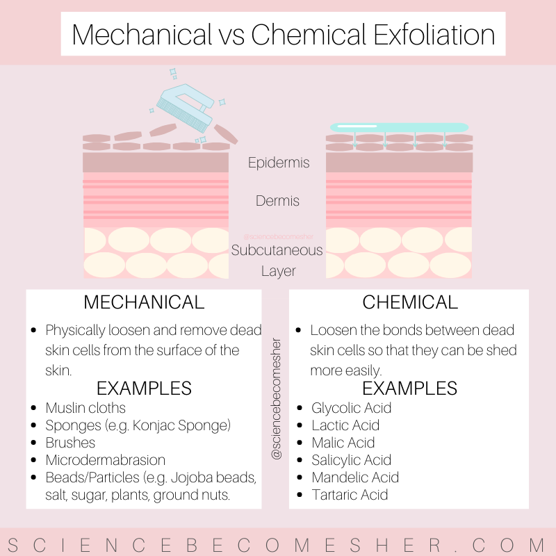 Science Becomes Her The Science Of Skincare Dermatology Skin Care Chemical Exfoliation Skin Facts