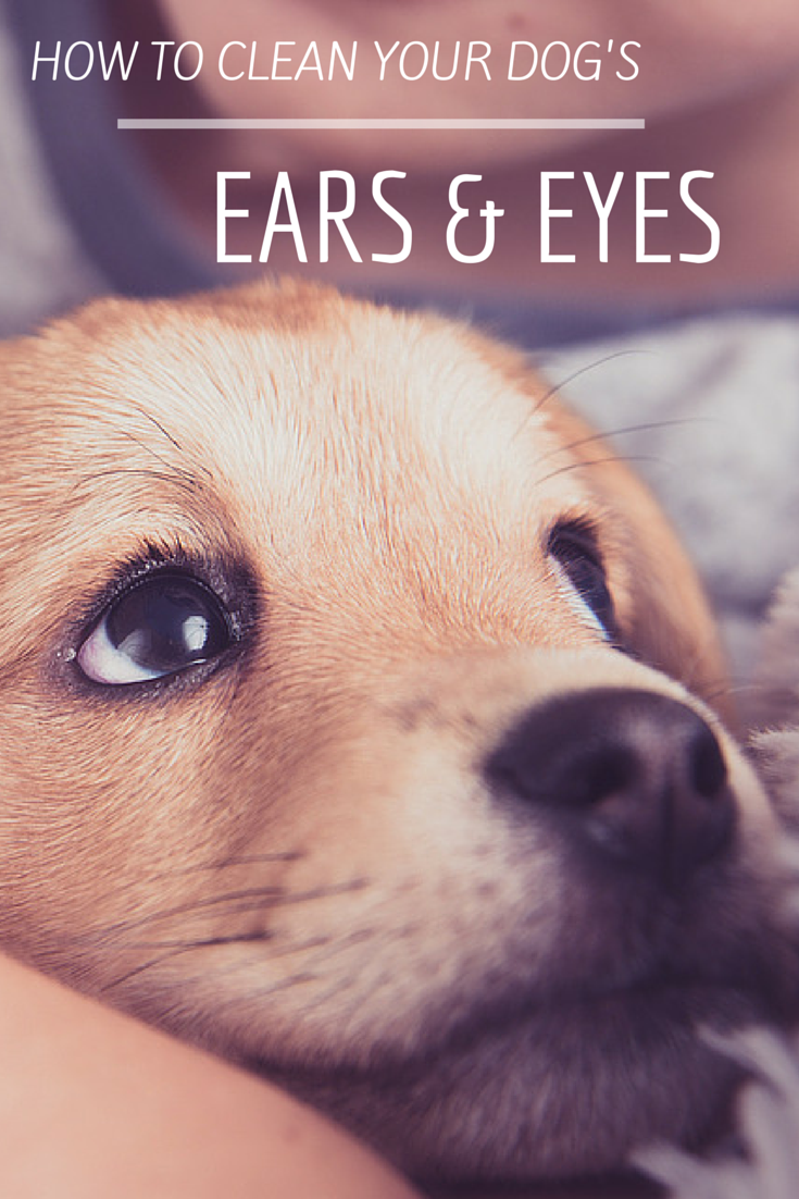 how to keep your ears clean