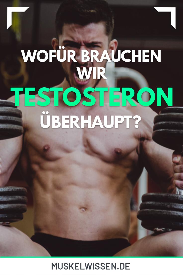 Testosteron für Muskelaufbau: Der entscheidende Faktor