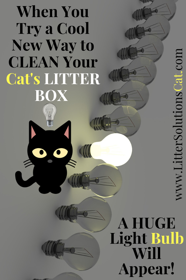 When I Show You A Cool New Way To Clean Your Cat S Litter Boxes A Light Bulb Will Light Up Cat Litter Cat Litter Box Cats