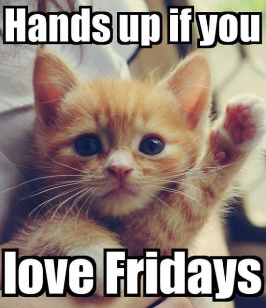 Happy Friday Meme To Share It S Happy Friday That Is What We Long To Say All The Holy Days Of Our Lives W Happy Memes Funny Friday Memes Its Friday Quotes