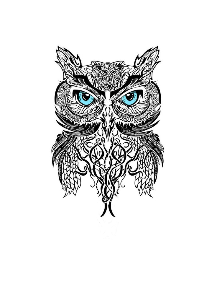 Je Veut Ce Tatouage Hiboux En Bas Du Dos 3 Tatouage Tattoos