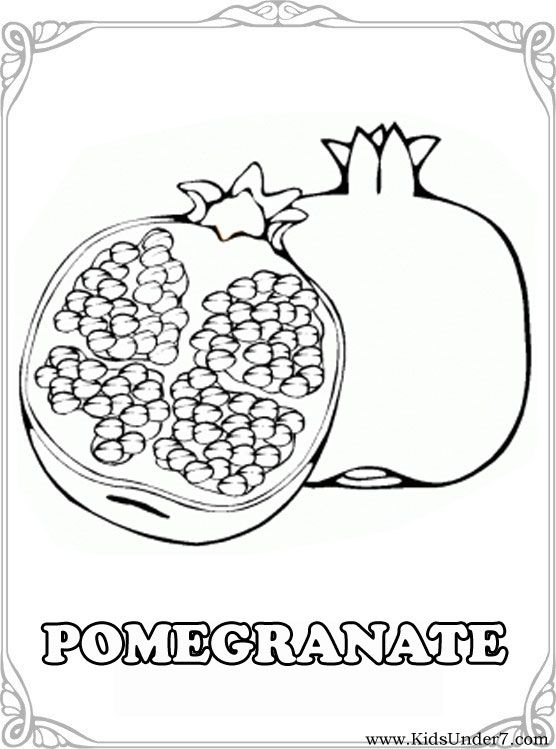 Fruits And Berries Coloring Pages Free Coloring Pages Fruit And Berries There Are 16 Color Fruit Coloring Pages Pomegranate Drawing Coloring Pages For Kids