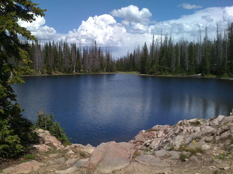 Buffalo pass colorado summit lake is located at summit for Fishing lakes in colorado springs