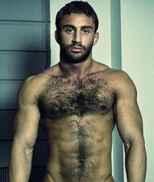 arab gay porn md