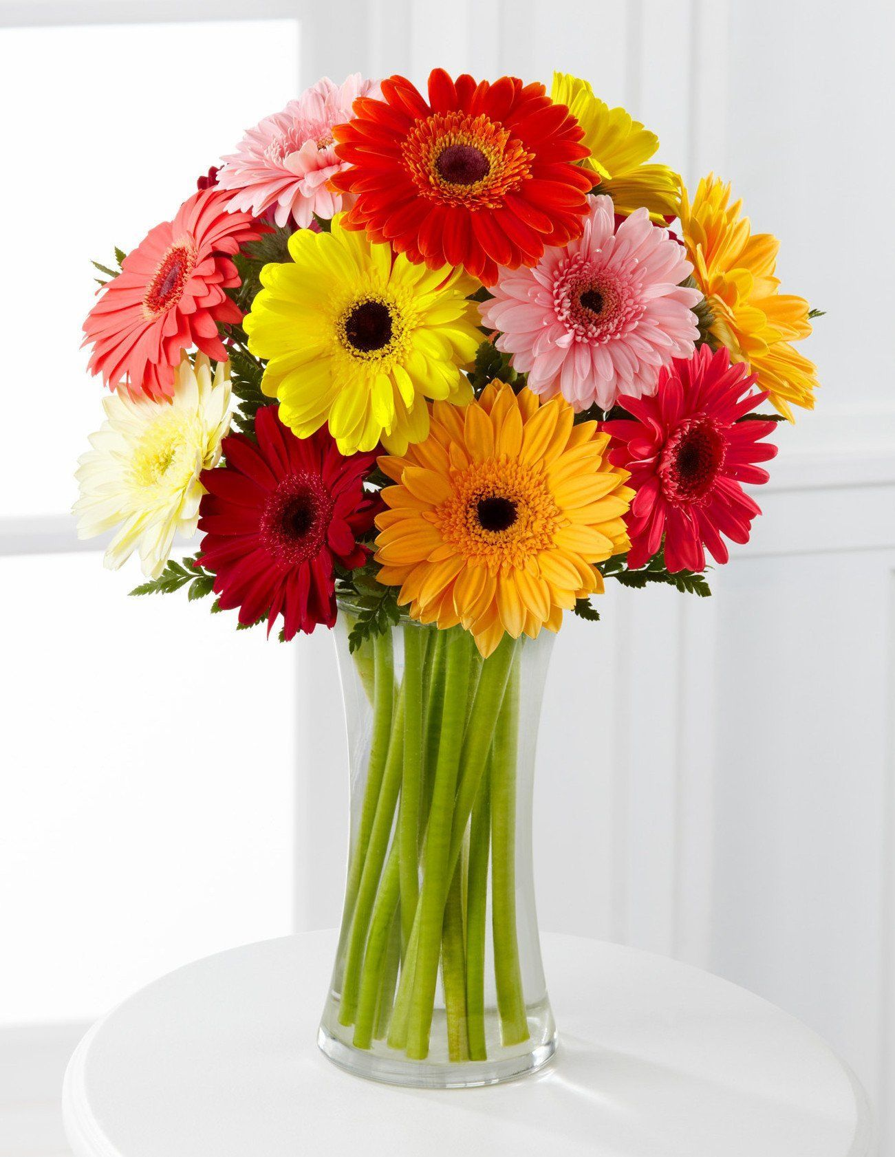 Colorful World Gerbera Daisy Bouquet 12 Stems With Vase Colorful World Gerbera Daisy Bouquet 12 Stems With Vase Bi In 2020 Gerbera Daisy Daisy Bouquet Gerbera