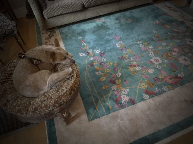 The Glittering Plain: Mama Moonshine. This rug is my favorite thing among a whole house with beautiful things.