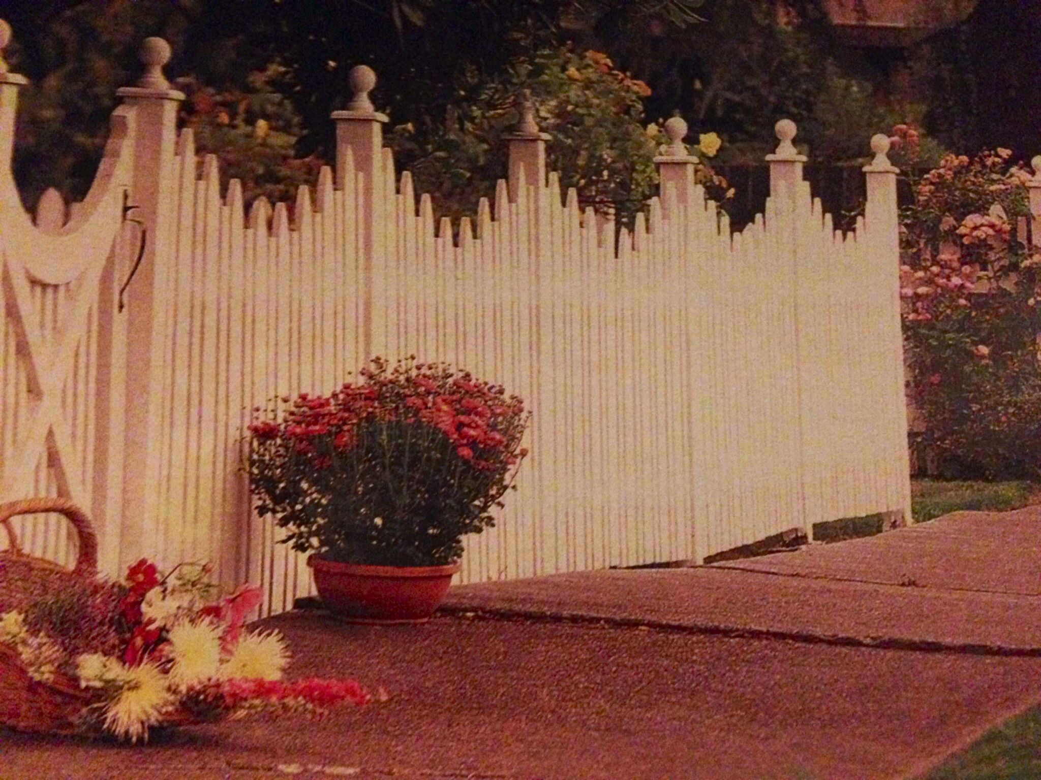 victorian picket fence