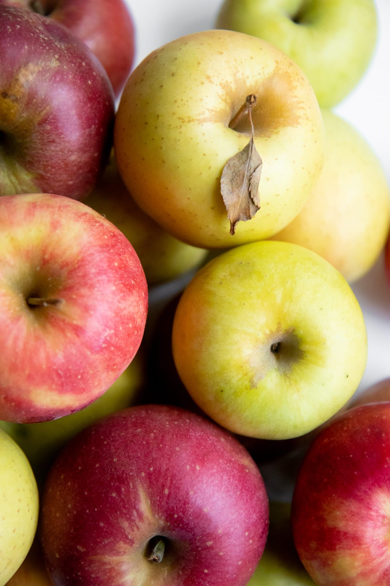 How to store apples with images how to store apples