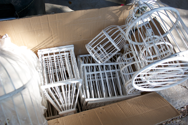 box of cages