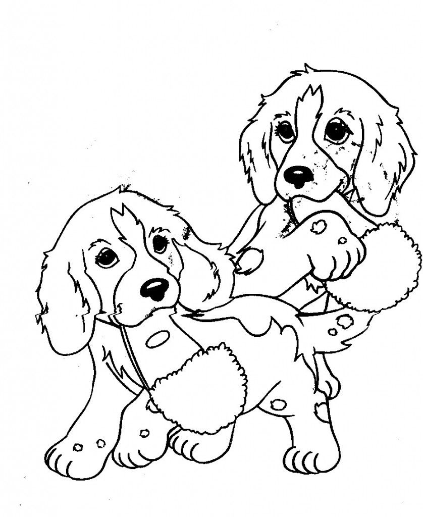Coloring Pages of Cute Puppies  omalovnky  Pinterest  Coloring