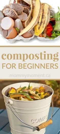 FOR BEGINNERS Composting for beginners - easy tips for you to compost successfully at home.Composting for beginners - easy tips for you to compost successfully at home.
