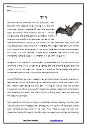 Halloween Reading Comprehension about Bats   Halloween ...