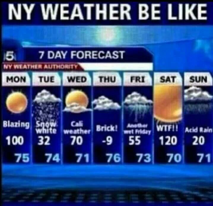 new york weather  weather quotes 7 day forecast new