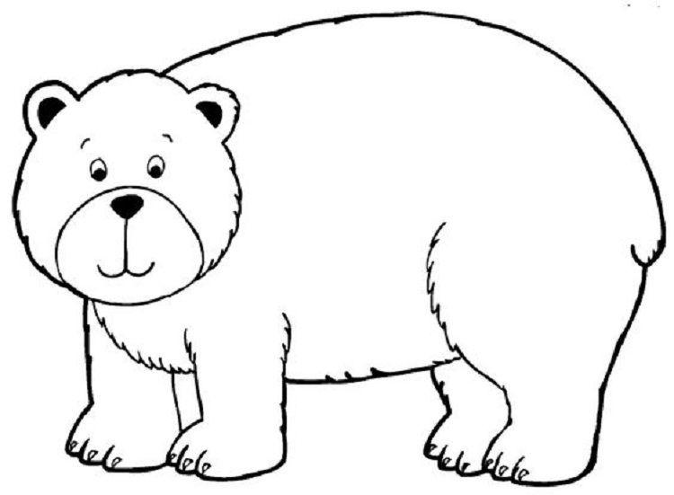 Bear Coloring Pages Kindergarten Boyama Sayfalari Hayvan Boyama