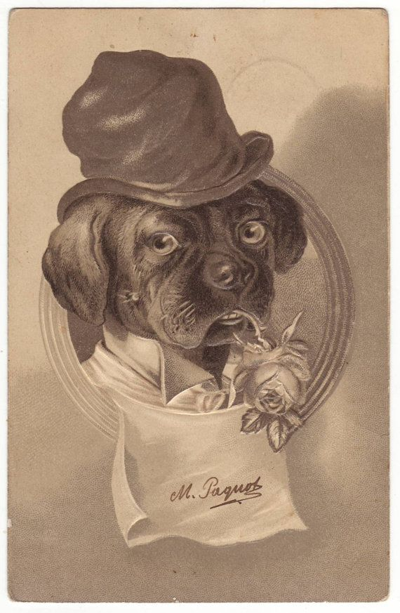 Antique german postcard with anthropomorphic dog. 1905