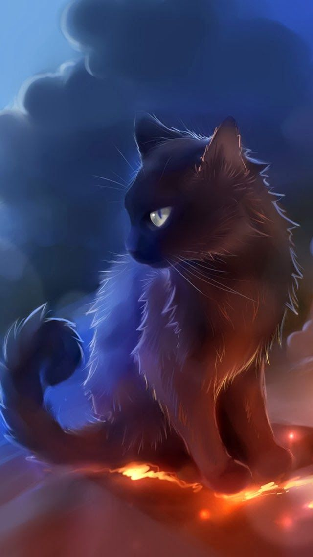 Galaxywolf Cool Kitty Cat Tags Kitten Cat Cool Ipod Iphone Wallpaper Or Lock Screen Re Pinned Black Cat Anime Warrior Cats Art Cats Illustration