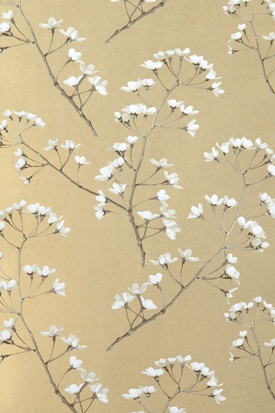 Wallpaper - Blossom - Renaissance Gold | Renaissance, Wallpaper and ...