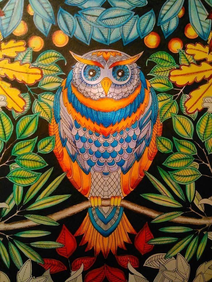 Pin By Aline S Ferreira On Johanna Basford Jardim Secreto Floresta Encantada Magical Jungle Oceano Perdido Ive E A Borboleta Coloring Book Art Johanna Basford Coloring Book Whimsical Owl