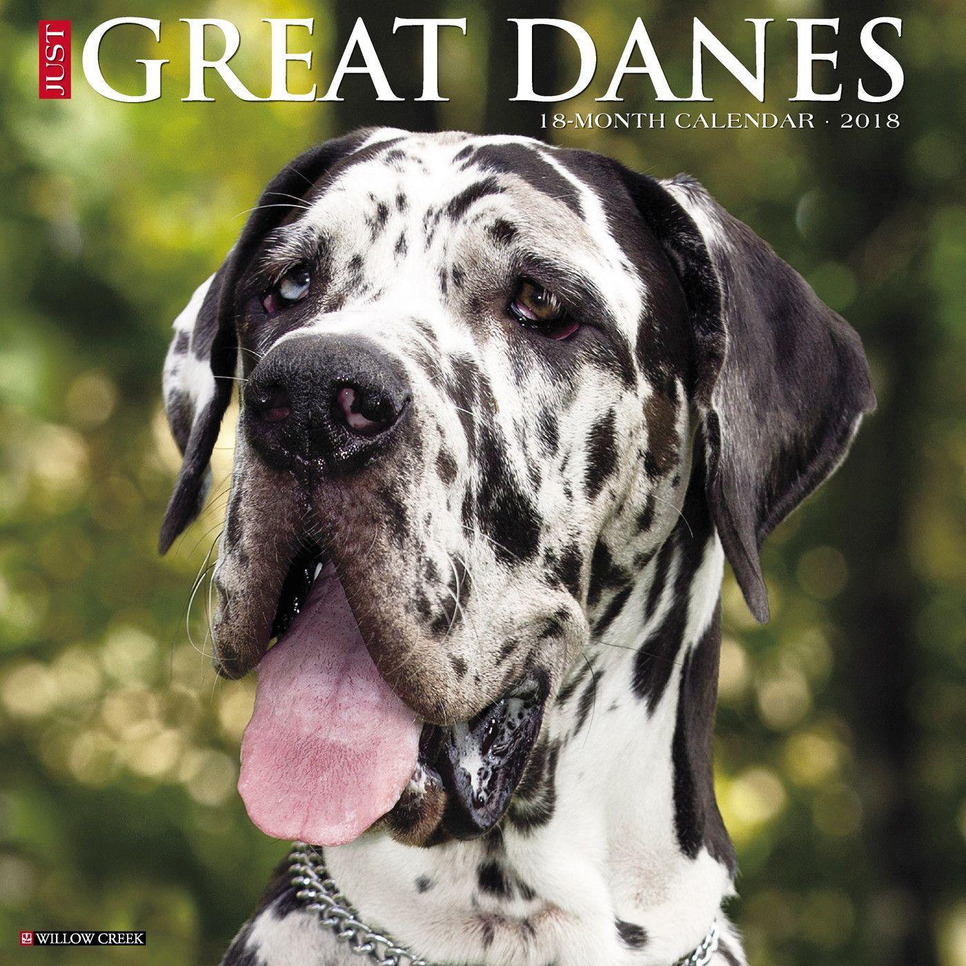 Just Great Danes 2018 Calendar Great Dane Dogs Dogs Dane Puppies