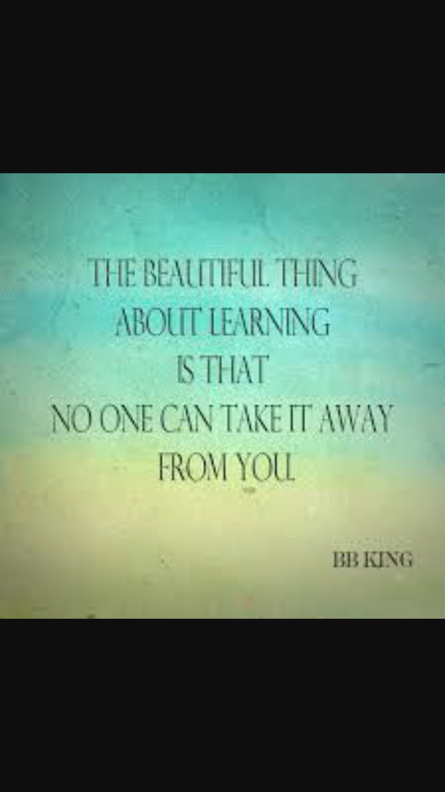The beautiful thing about learning is that no one can take
