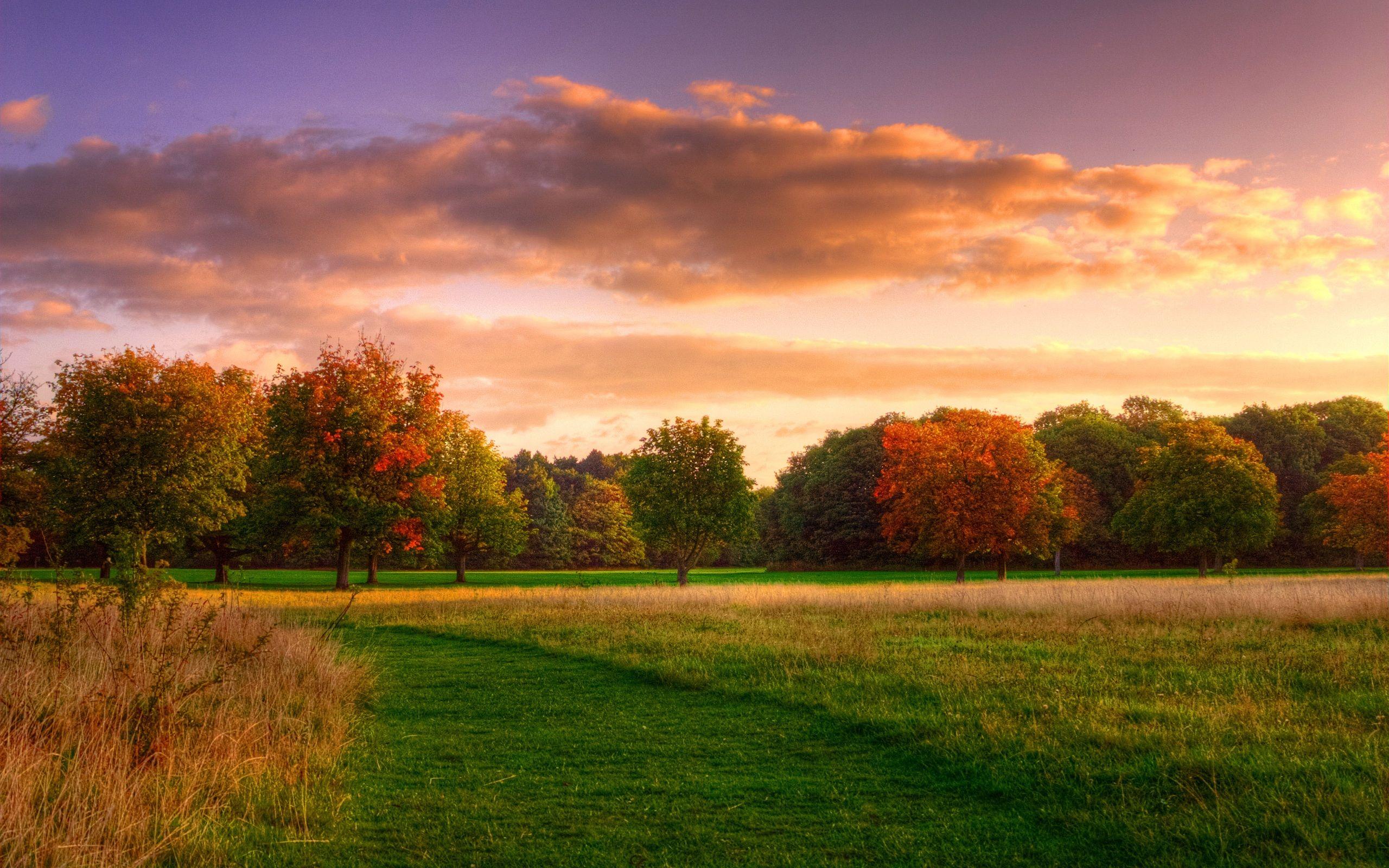 Top paisagem natural - Pesquisa Google | Landscapes | Pinterest  RZ47