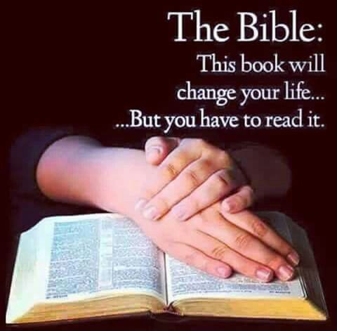 Find a daily Bible reading app on your phone  In less than