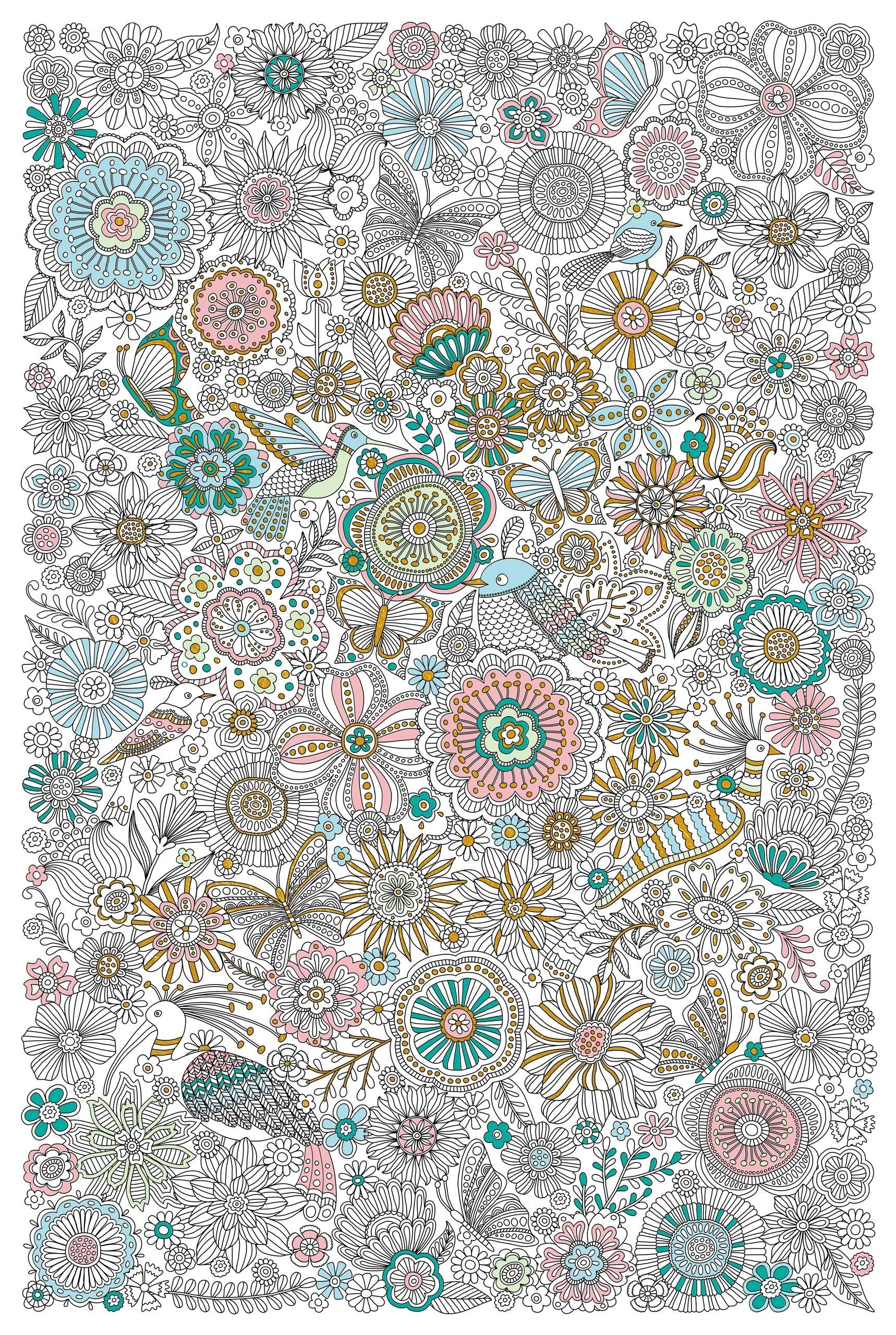 The coloring book poster - Blooms Birds Butterflies Poster Coloring Bookbutterflies