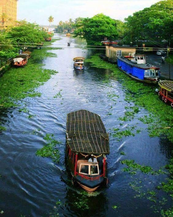 Kerala Places To Visit: Backwater Of Kerala